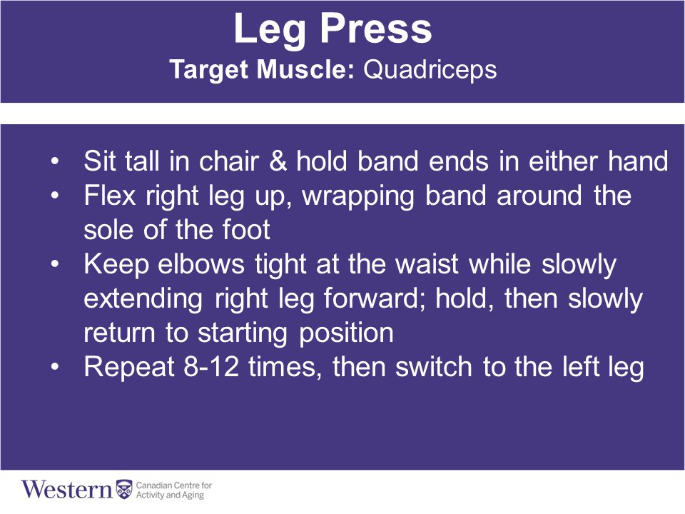 Leg Press Target Muscle: Quadriceps Sit tall in chair & hold band ends in either hand Flex right leg up, wrapping band around the sole of the foot Kee