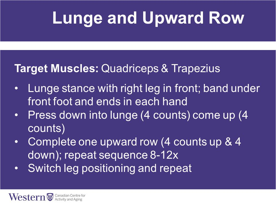 Lunge and Upward Row Target Muscles: Quadriceps & Trapezius Lunge stance with right leg in front; band under front foot and ends in each hand Press do