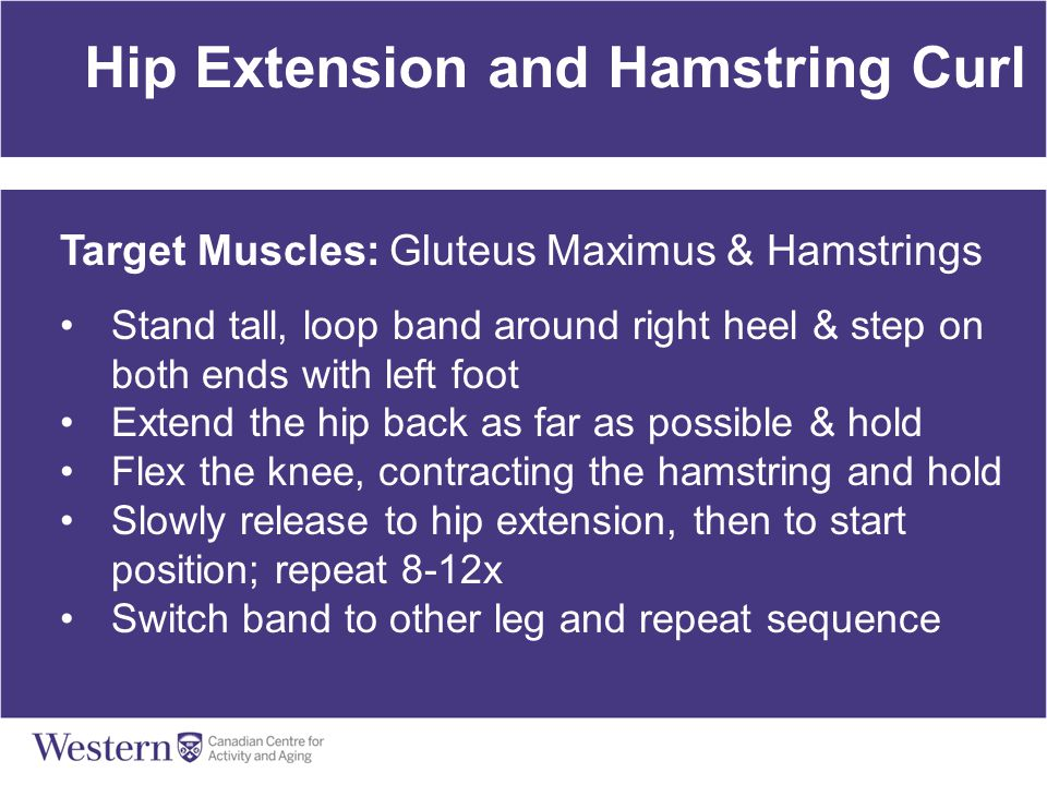 Hip Extension and Hamstring Curl Target Muscles: Gluteus Maximus & Hamstrings Stand tall, loop band around right heel & step on both ends with left fo