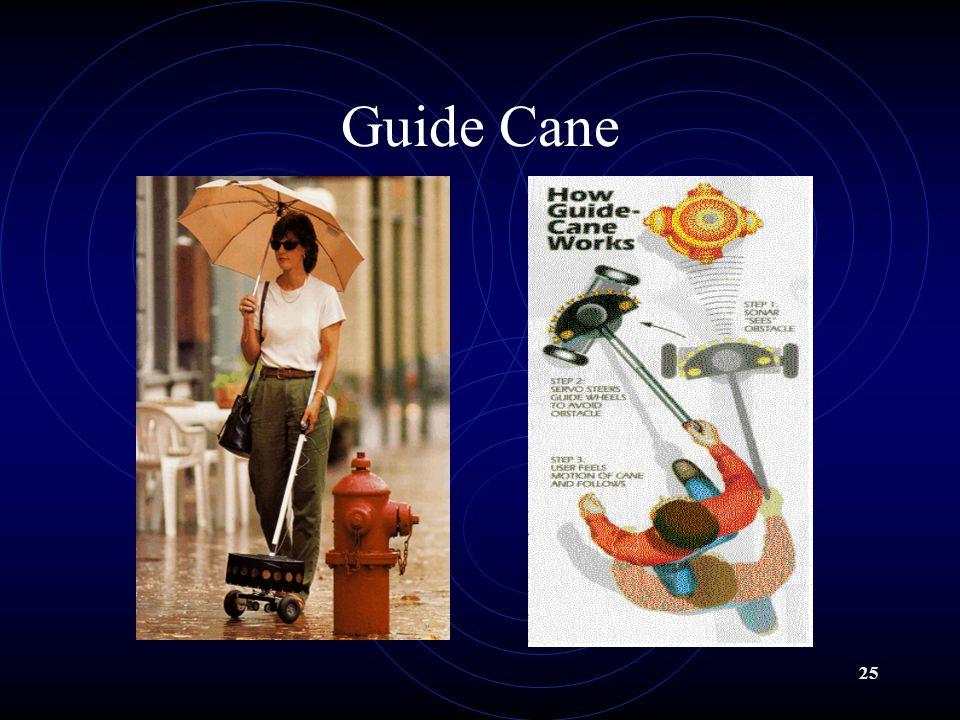 24 Guide Cane