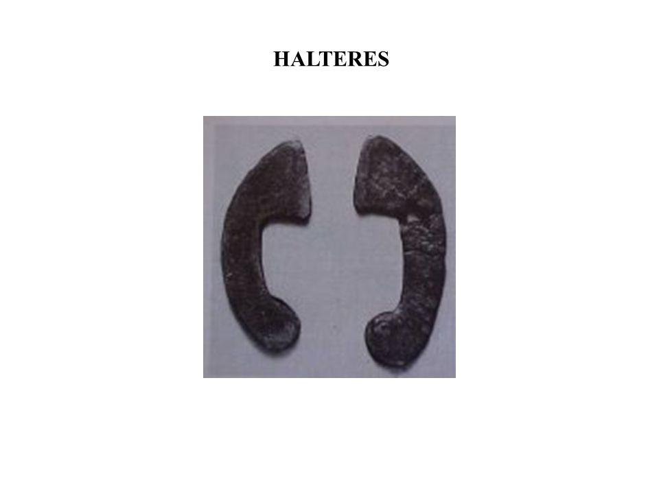 HALTERES