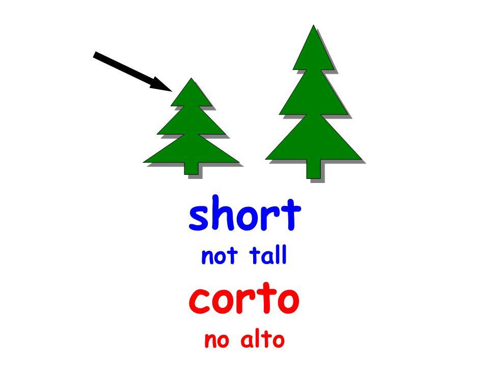 short not tall corto no alto