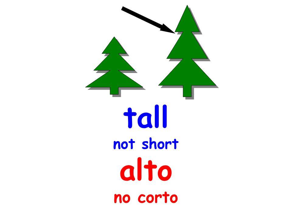 tall not short alto no corto