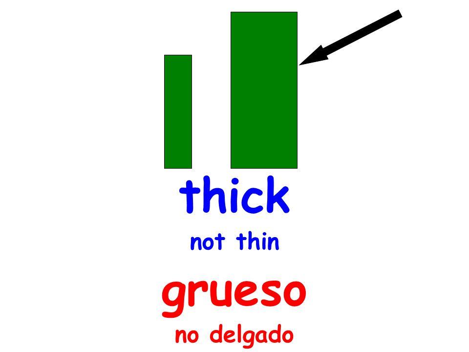 thick not thin grueso no delgado