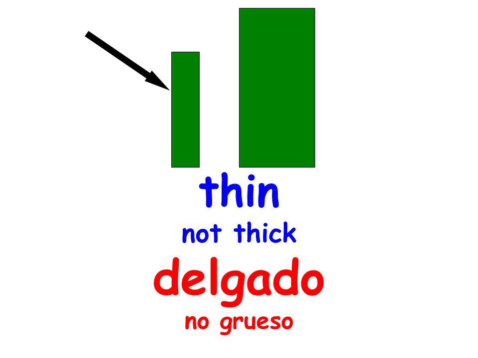 thin not thick delgado no grueso
