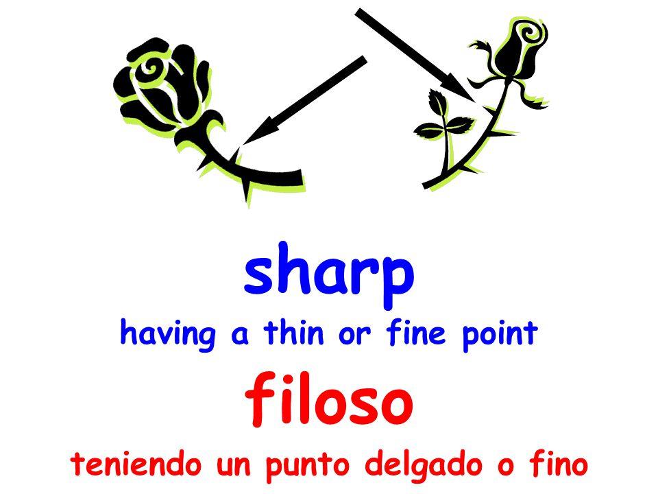 sharp having a thin or fine point filoso teniendo un punto delgado o fino