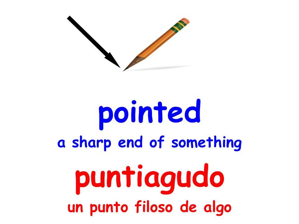 pointed a sharp end of something puntiagudo un punto filoso de algo
