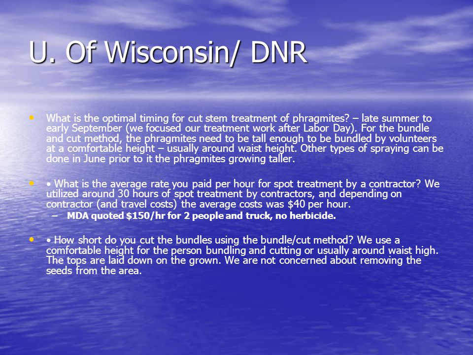 U. Of Wisconsin/ DNR What is the optimal timing for cut stem treatment of phragmites.