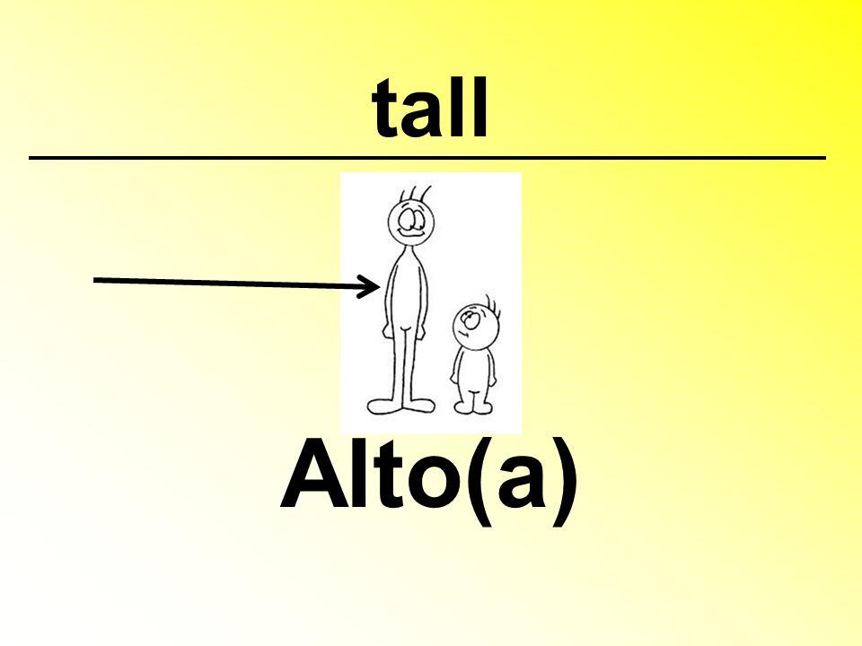 tall Alto(a)