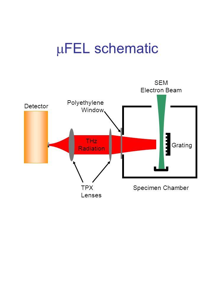  FEL schematic Specimen Chamber Detector SEM Electron Beam Grating Polyethylene Window TPX Lenses THz Radiation