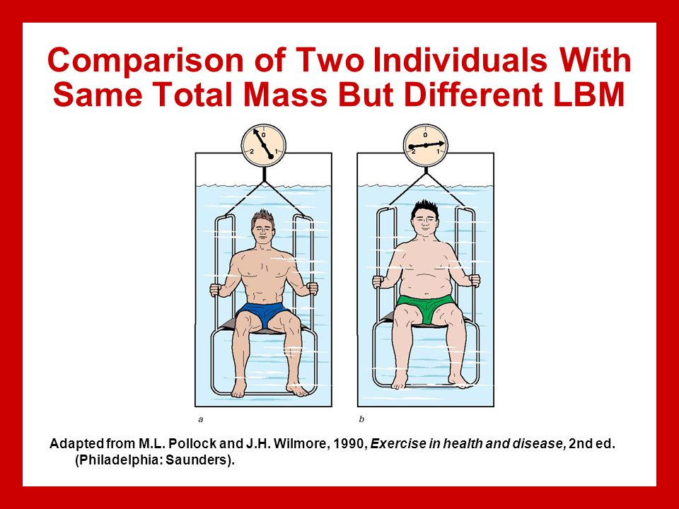 Comparison of Two Individuals With Same Total Mass But Different LBM Adapted from M.L.