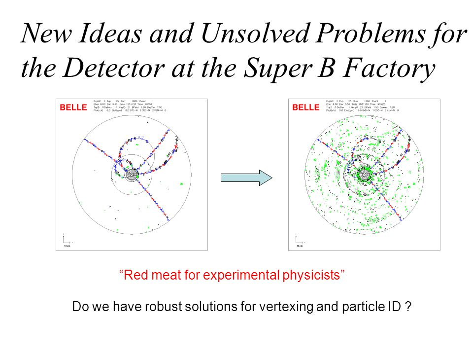 New Ideas and Unsolved Problems for the Detector at the Super B Factory Red meat for experimental physicists Do we have robust solutions for vertexing and particle ID