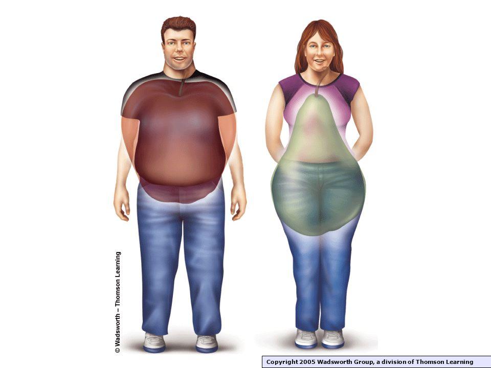 "Body Fat Distribution ""Apple shape"" 1. Occurs more in men, postmenopausal women, smokers, ""heavy drinkers"", & women, smokers, ""heavy drinkers"", & sede"