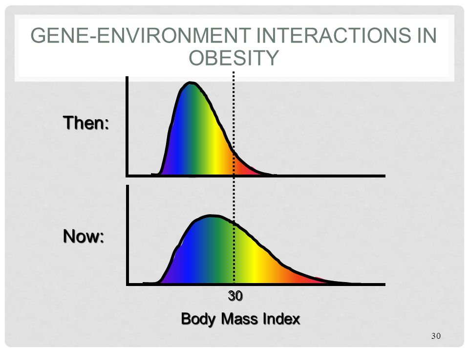 GENE-ENVIRONMENT INTERACTIONS IN OBESITY 30 Body Mass Index Then: Now: 30