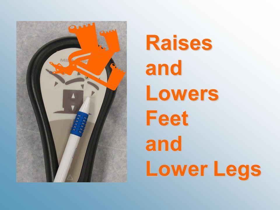 RaisesandLowersFeetand Lower Legs