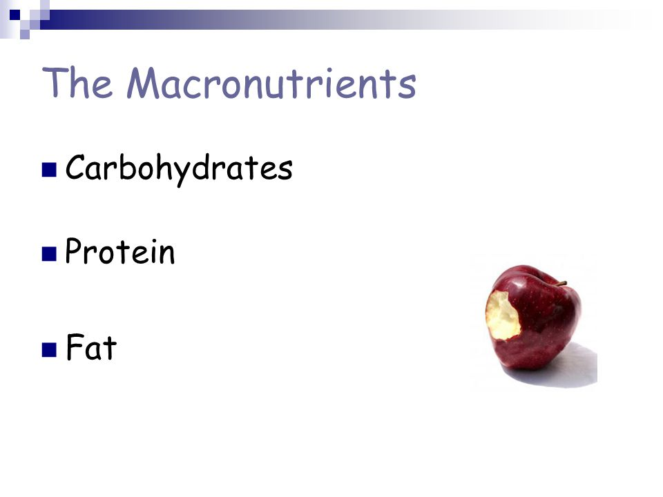 The Macronutrients Carbohydrates Protein Fat