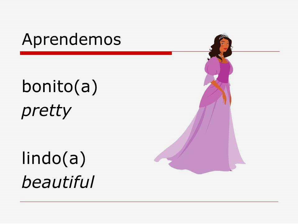 Aprendemos bonito(a) pretty lindo(a) beautiful