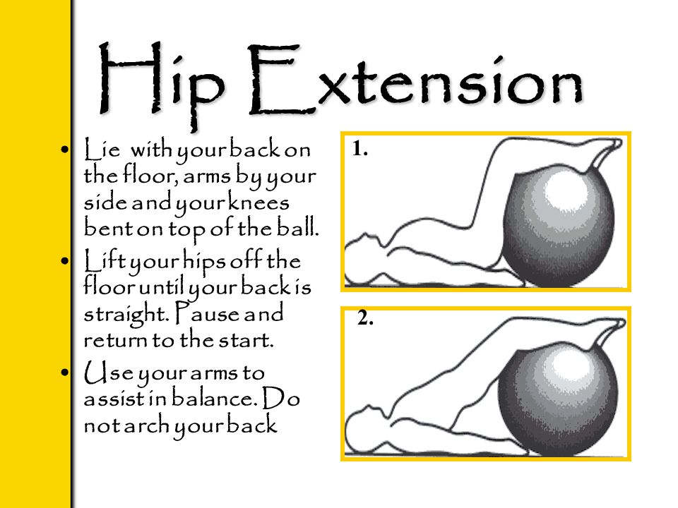 Hip Extension Lie with your back on the floor, arms by your side and your knees bent on top of the ball. Lift your hips off the floor until your back