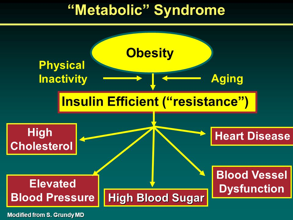 Obesity Insulin Efficient ( resistance ) High Cholesterol Elevated Blood Pressure Blood Vessel Dysfunction Heart Disease Physical Inactivity Aging High Blood Sugar Metabolic Syndrome Modified from S.