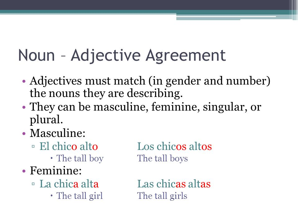 Noun – Adjective Agreement Adjectives must match (in gender and number) the nouns they are describing. They can be masculine, feminine, singular, or p