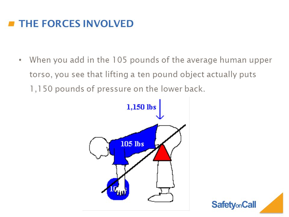 Safety on Call THE FORCES INVOLVED When you add in the 105 pounds of the average human upper torso, you see that lifting a ten pound object actually p