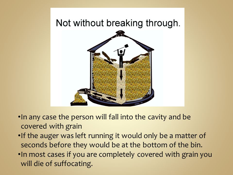 In any case the person will fall into the cavity and be covered with grain If the auger was left running it would only be a matter of seconds before they would be at the bottom of the bin.