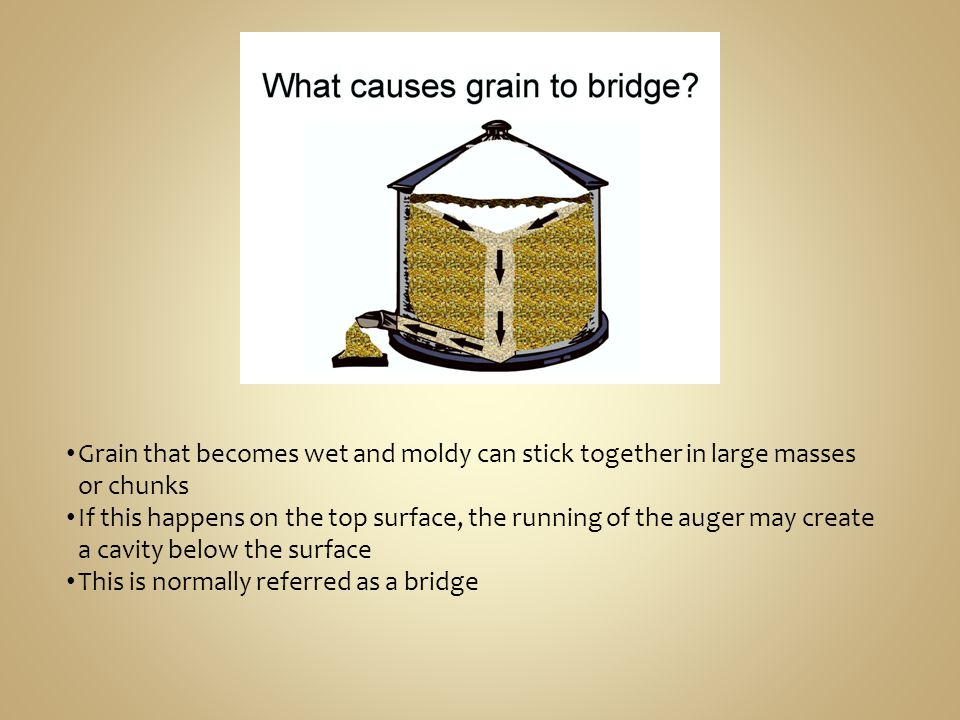 Grain that becomes wet and moldy can stick together in large masses or chunks If this happens on the top surface, the running of the auger may create a cavity below the surface This is normally referred as a bridge