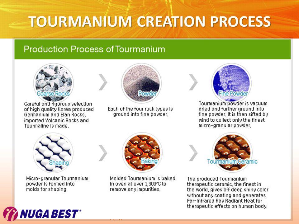 Copyright © Wondershare Software TOURMANIUM CREATION PROCESS