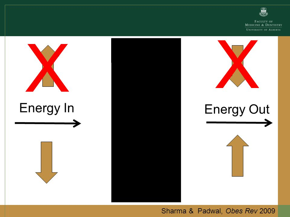 Energy In Energy Out X X Sharma & Padwal, Obes Rev 2009