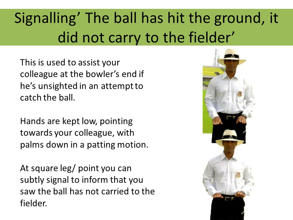Signalling' The ball has hit the ground, it did not carry to the fielder' This is used to assist your colleague at the bowler's end if he's unsighted in an attempt to catch the ball.