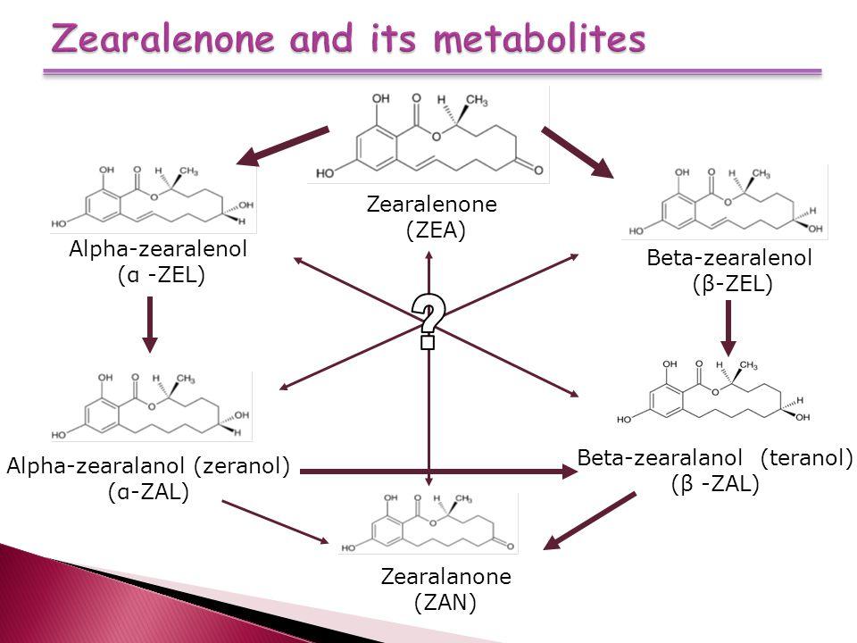 Zearalenone and its metabolites Zearalenone (ZEA) Alpha-zearalenol (α -ZEL) Beta-zearalenol (β-ZEL) Alpha-zearalanol (zeranol) (α-ZAL) Beta-zearalanol (teranol) (β -ZAL) Zearalanone (ZAN)
