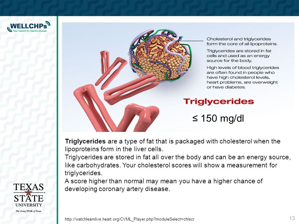 Triglycerides are a type of fat that is packaged with cholesterol when the lipoproteins form in the liver cells.