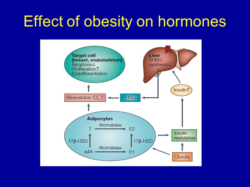 Effect of obesity on hormones