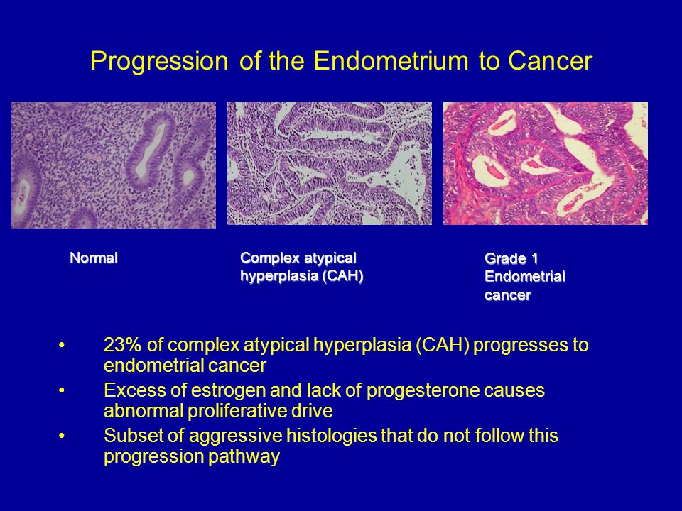 Progression of the Endometrium to Cancer 23% of complex atypical hyperplasia (CAH) progresses to endometrial cancer Excess of estrogen and lack of pro