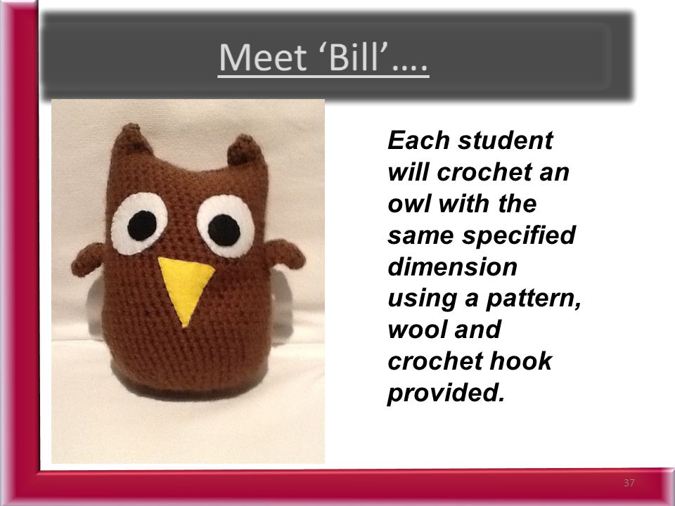 37 Each student will crochet an owl with the same specified dimension using a pattern, wool and crochet hook provided.