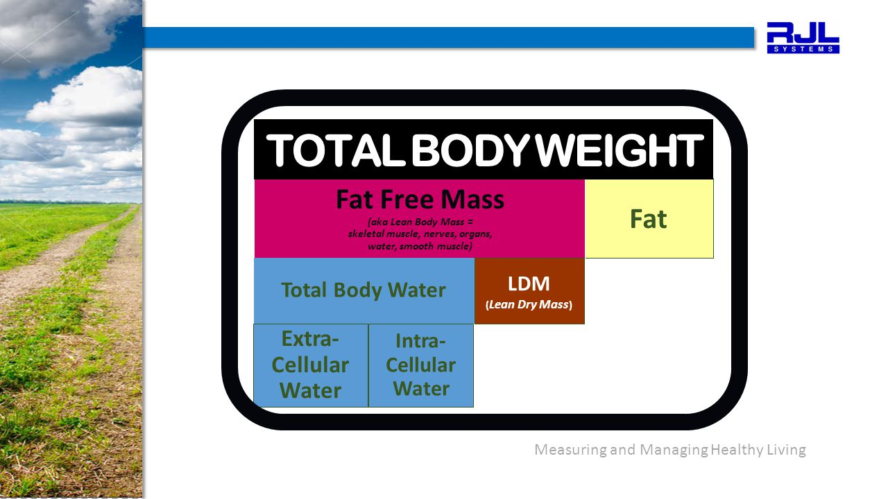 Measuring and Managing Healthy Living Fat Fat Free Mass (aka Lean Body Mass = skeletal muscle, nerves, organs, water, smooth muscle) Extra- Cellular Water Intra- Cellular Water Total Body Water LDM ( Lean Dry Mass ) TOTAL BODY WEIGHT