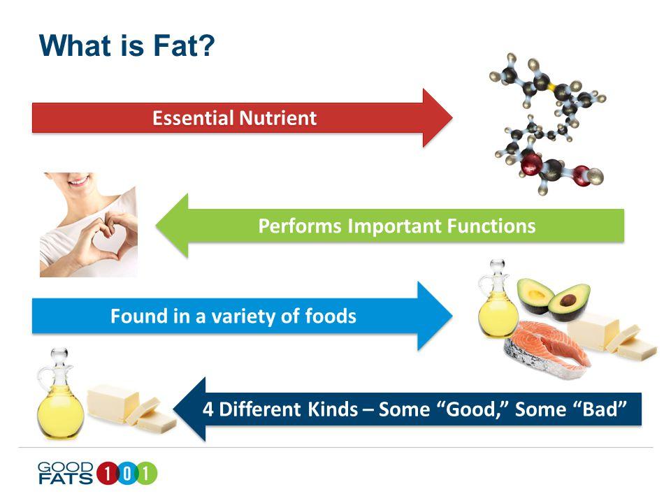 Good vs. Bad Fats