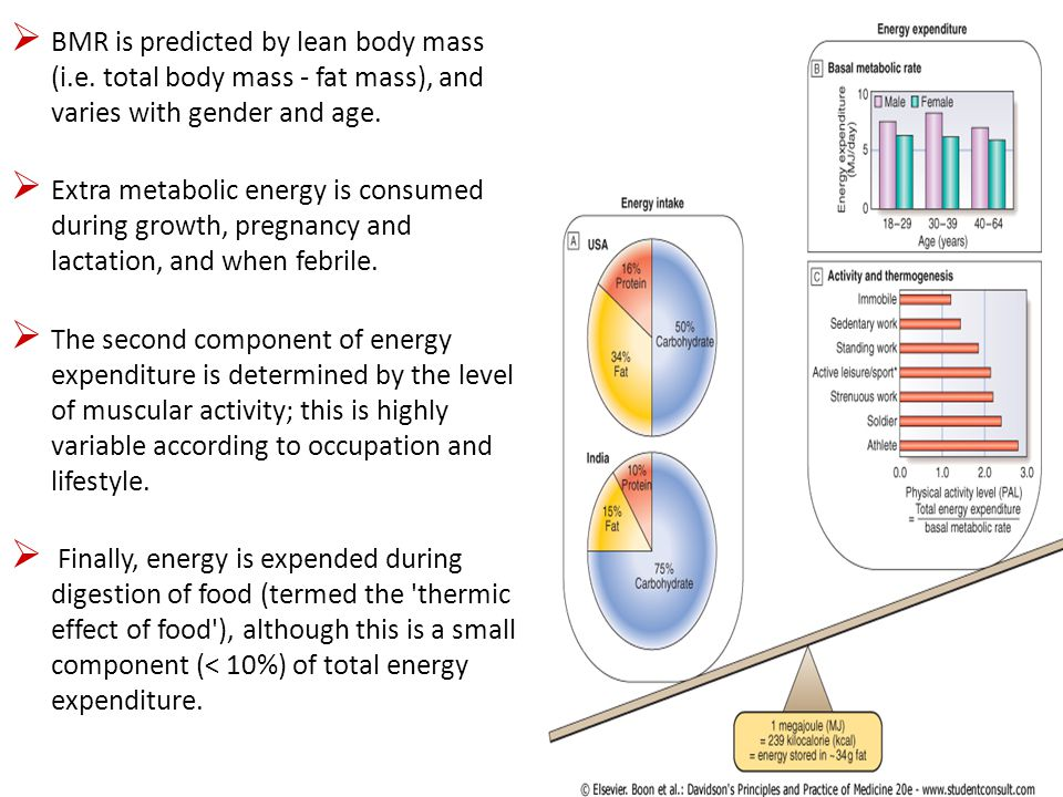 DAILY ENERGY REQUIREMENTS Circumstances Healthy adult females Healthy adult males At rest (1600 kcal) (2000 kcal) Light work (2000 kcal) (2700 kcal) Heavy work (2250 kcal) (3500 kcal)