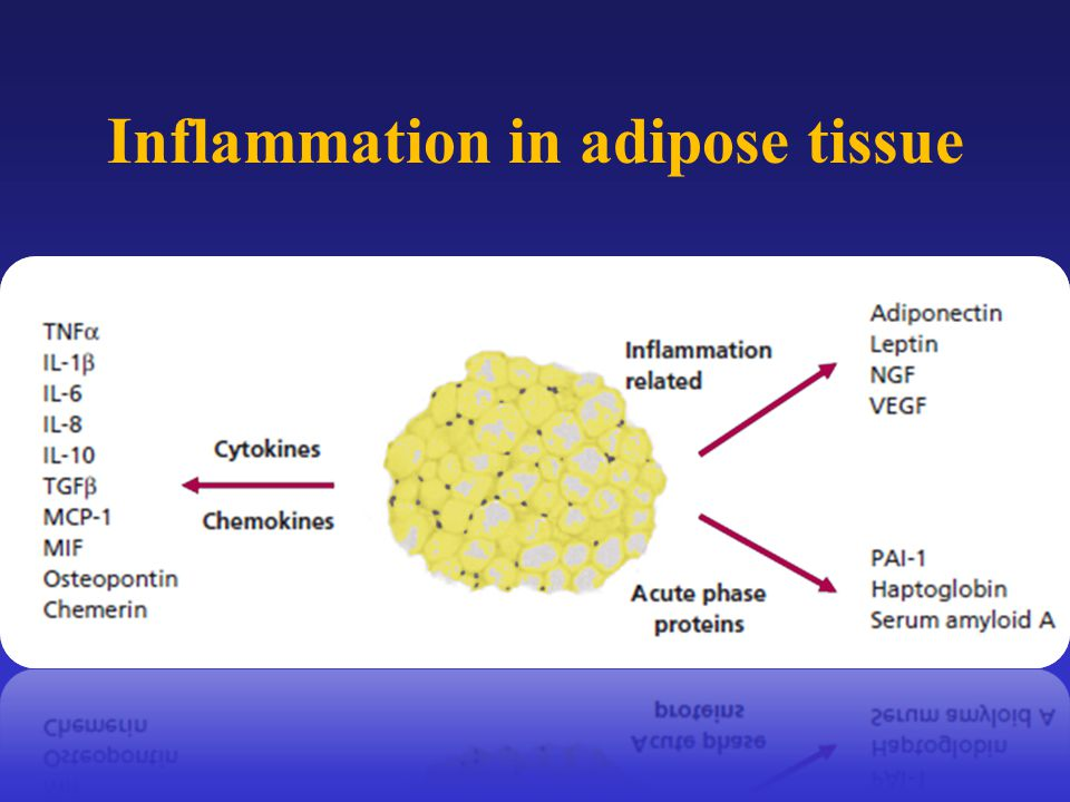Inflammation in adipose tissue