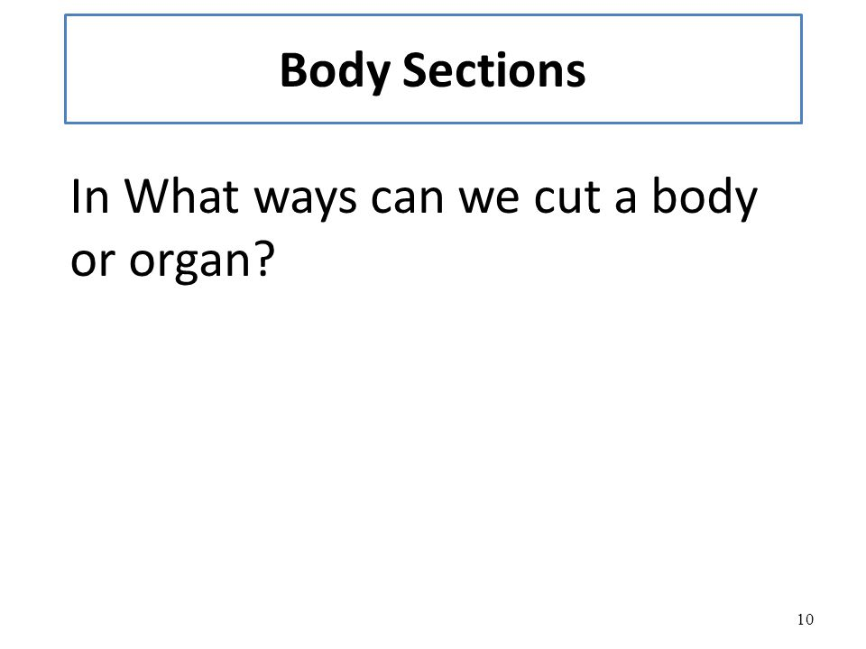 10 Body Sections In What ways can we cut a body or organ?