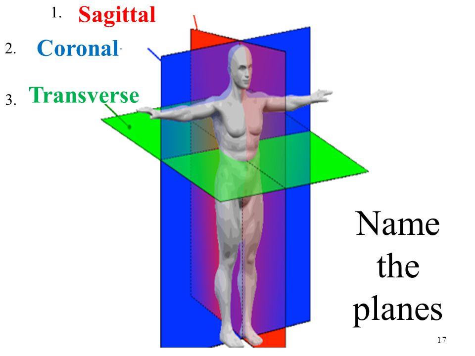 17 Name the planes 1. 2. 3. Sagittal Coronal Transverse