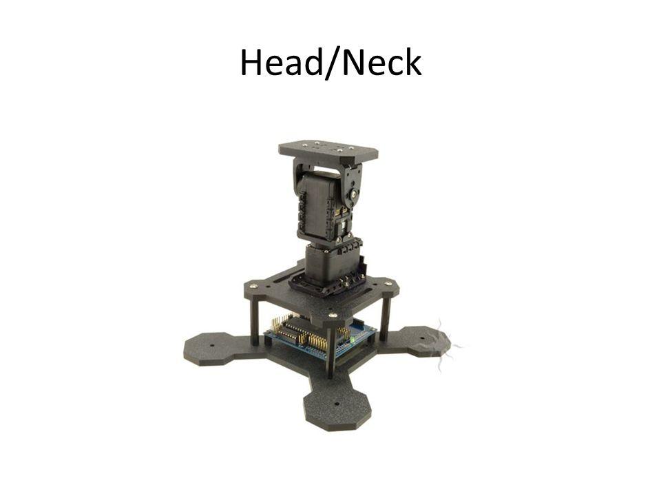 Head/Neck