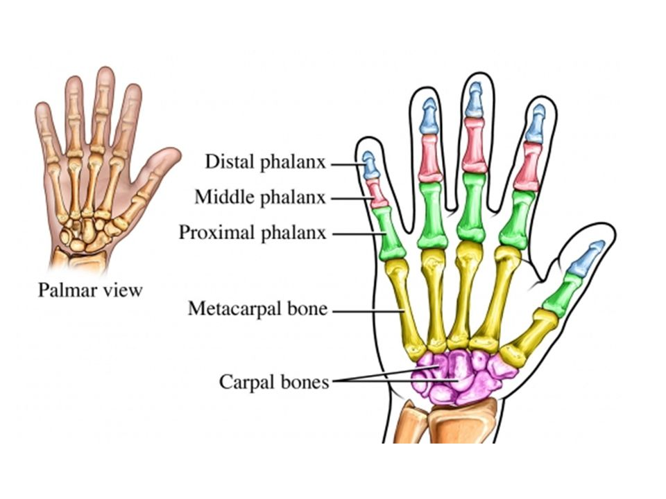 Palpation of ulnar nerve