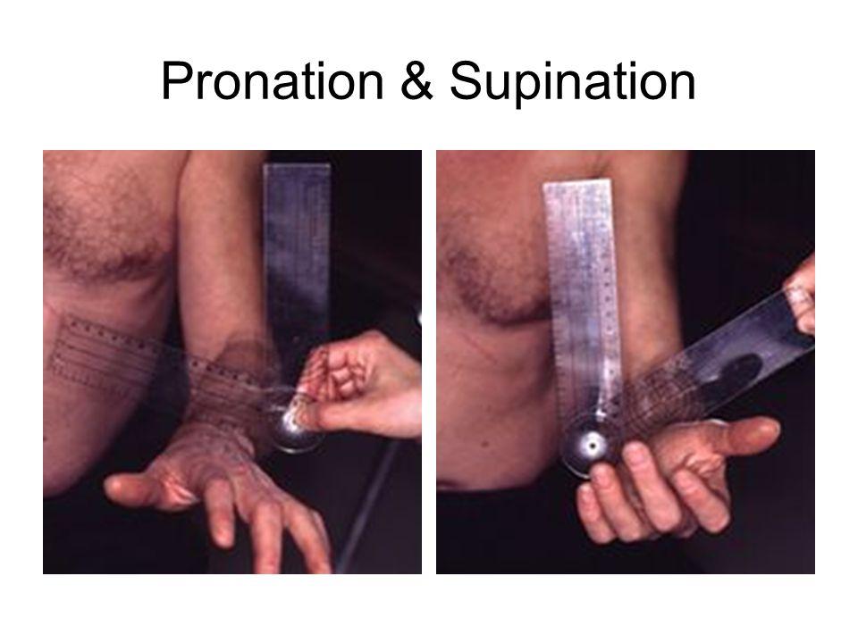 Pronation & Supination