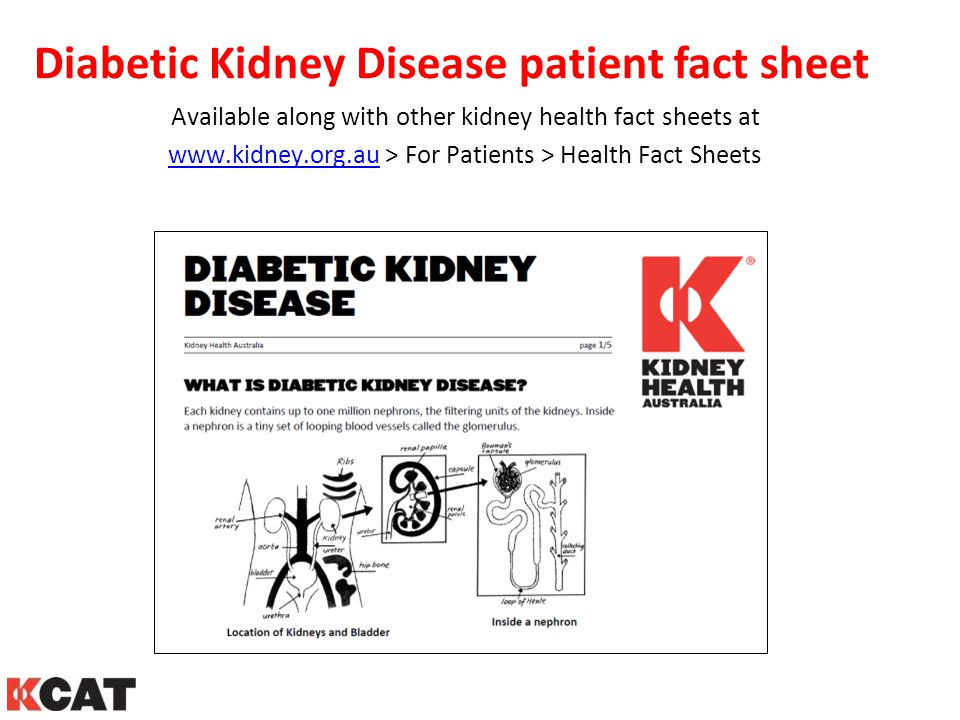 Diabetic Kidney Disease patient fact sheet Available along with other kidney health fact sheets at www.kidney.org.auwww.kidney.org.au > For Patients >