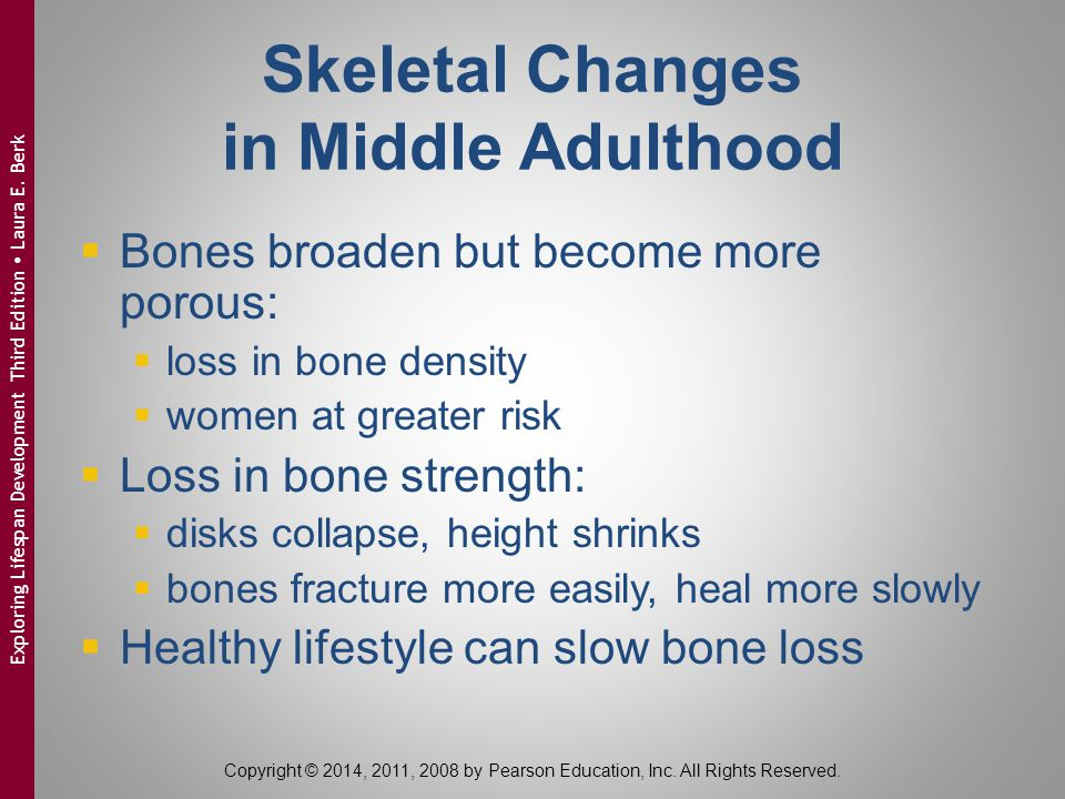 Skeletal Changes in Middle Adulthood  Bones broaden but become more porous:  loss in bone density  women at greater risk  Loss in bone strength: 