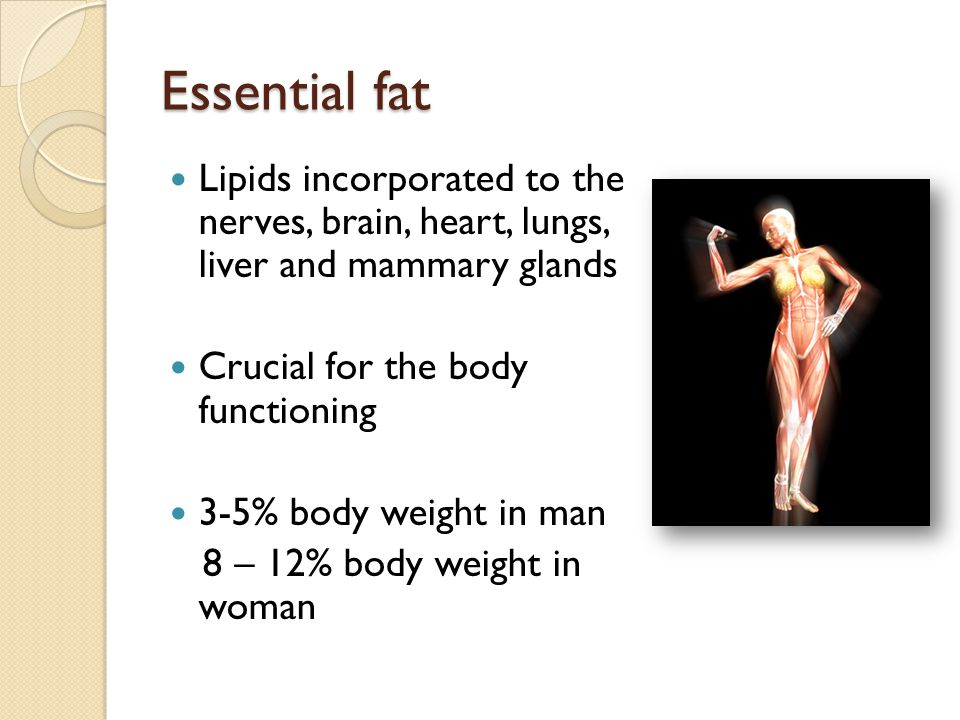 Essential fat Lipids incorporated to the nerves, brain, heart, lungs, liver and mammary glands Crucial for the body functioning 3-5% body weight in ma