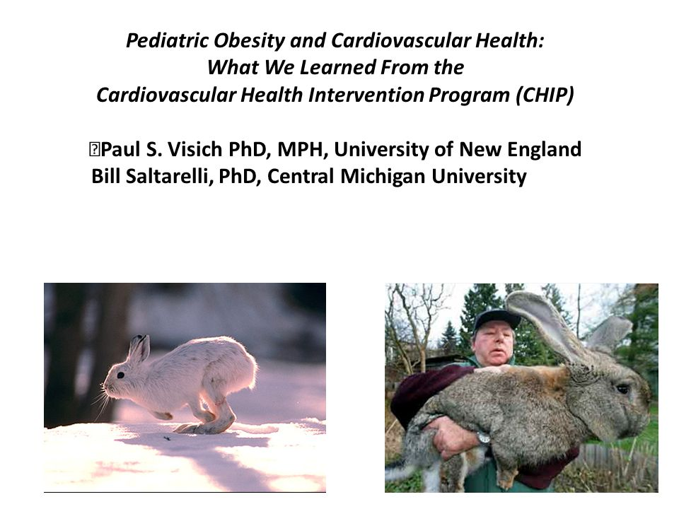 Pediatric Obesity and Cardiovascular Health: What We Learned From the Cardiovascular Health Intervention Program (CHIP) Paul S.