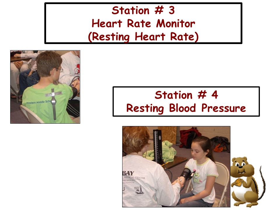 Station # 3 Heart Rate Monitor (Resting Heart Rate) Station # 4 Resting Blood Pressure