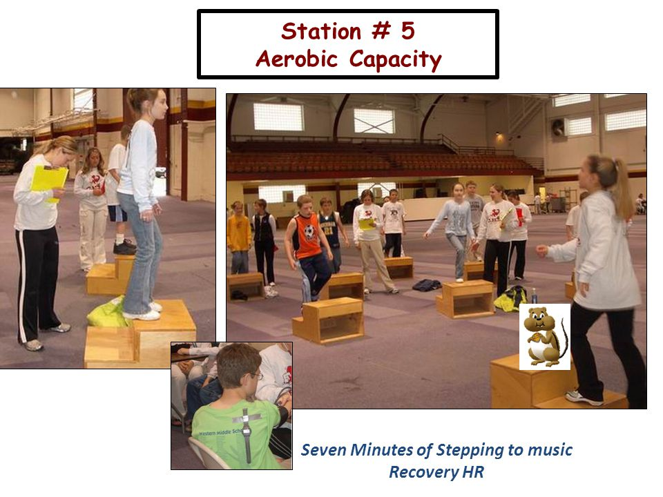Station # 5 Aerobic Capacity Seven Minutes of Stepping to music Recovery HR